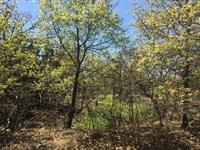 29+ Scenic Recreational Acres : Sidney : Comanche County : Texas
