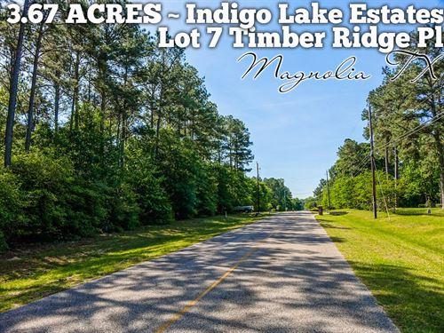 3.67 Acres In Montgomery County : Magnolia : Montgomery County : Texas