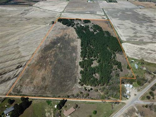 77 Acre Irrigated Farm w/ Pine : McCrory : Woodruff County : Arkansas
