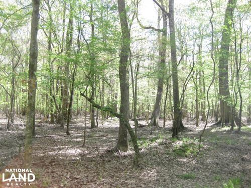 Pea River Recreational Tract/ Cabin : Clayton : Barbour County : Alabama