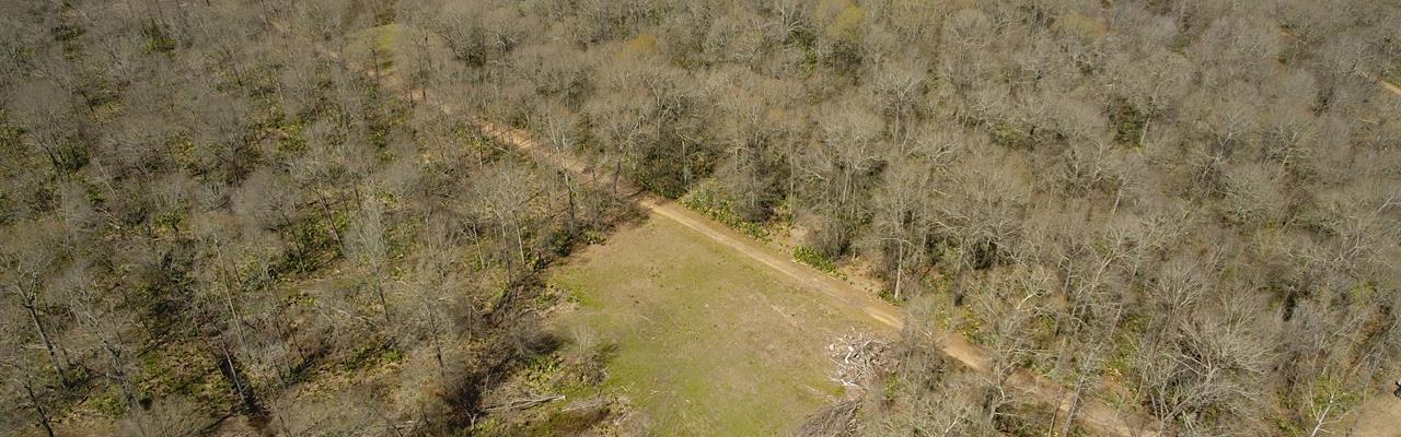 396 Ac - Hunting & Camp Site Wi : Newellton : Tensas Parish : Louisiana