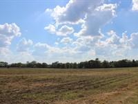 Mini Farm In Bibb County : Bibb : Bibb County : Georgia