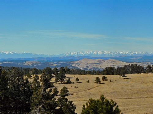 9.4 Acres With Bunkhouse : Cripple Creek : Teller County : Colorado