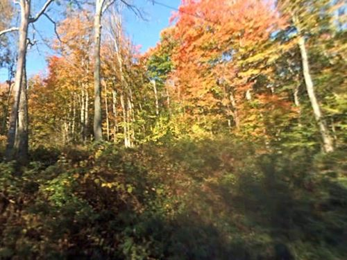 Wayne County, Pa $20,000 : Newfoundland : Wayne County : Pennsylvania