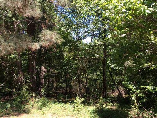 10 Acres Heavily Wooded, Nacogdoch : Nacogdoches : Texas