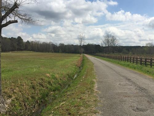 Potential Commercial Tract With Roa : Taylor : Lafayette County : Mississippi