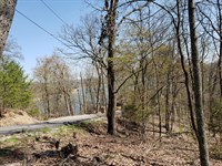 Dockable Cherokee Lake Front Lot : Mooresburg : Hawkins County : Tennessee