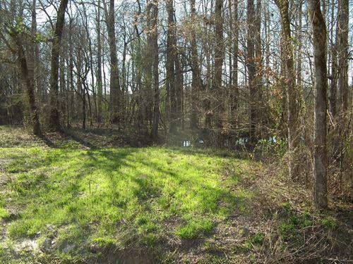 American Legion Lake B : Philadelphia : Neshoba County : Mississippi