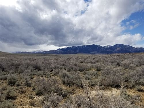 Beartooth View On Grove Creek : Belfry : Carbon County : Montana