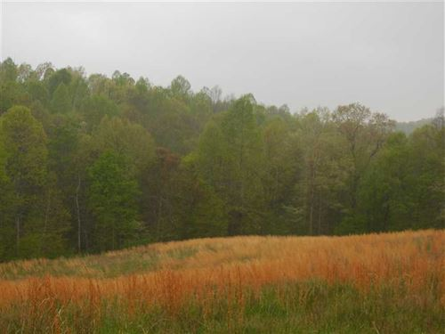Hibernia Ridge Rd, Tracts 10, 11 : Buffalo : Taylor County : Kentucky