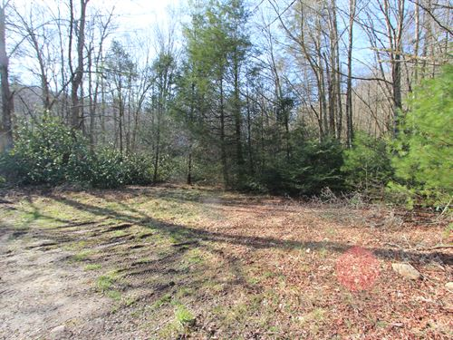 Large Acreage Tract For Sale : Troutdale : Grayson County : Virginia