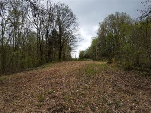40Ac W/River Frontage & Mtn Views : Burkesville : Cumberland County : Kentucky