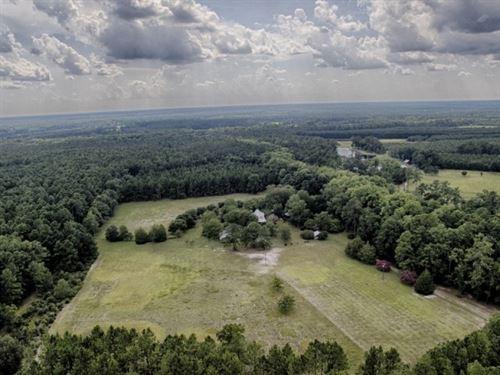 Fox Trail : Hampton : South Carolina