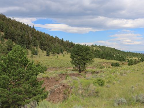 General And The Maiden Queen : Westcliffe : Custer County : Colorado