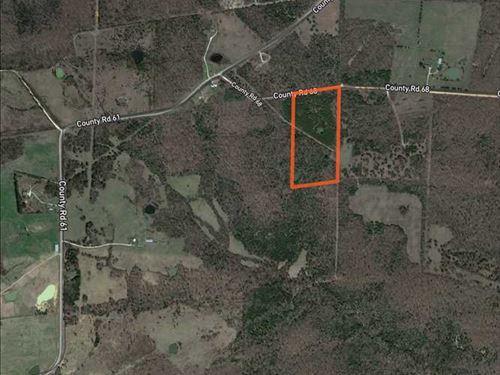 Zion 20 Acres : Zion : Izard County : Arkansas