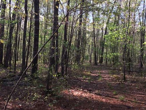 Beautiful Home And Acreage With Ni : West Point : Clay County : Mississippi