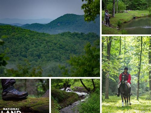 Black Mountain 337 Acre Wildern : Black Mountain : Buncombe County : North Carolina