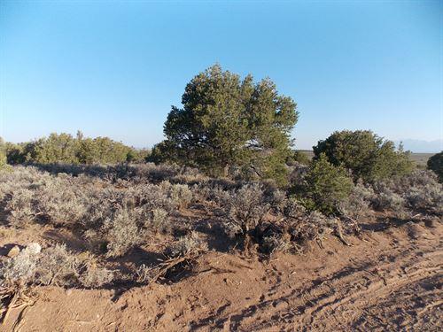 Costilla County, Co $20,000 : San Luis : Costilla County : Colorado