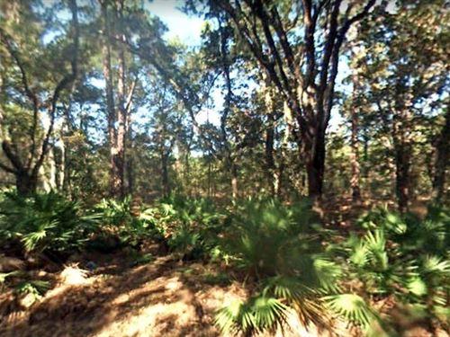 Saint Johns County, Fl $150,000 Neg : Elkton : Saint Johns County : Florida