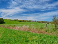 360 Acre Cattle Farm : Somerset : Madison County : Virginia