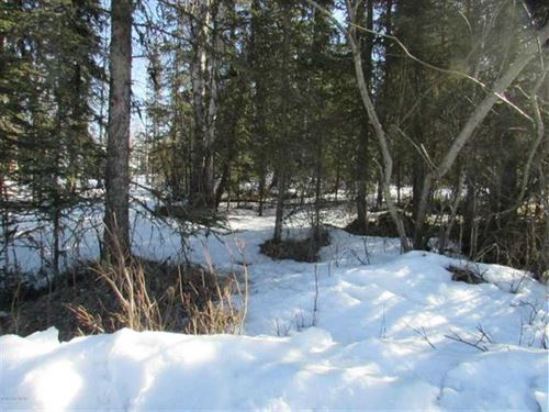 Great Family Lot Close to Morgan's : Sterling : Kenai Peninsula Borough : Alaska