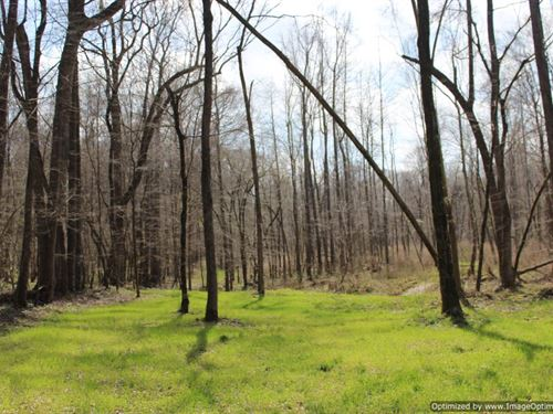 Recreational / Estate Property : Bentonia : Yazoo County : Mississippi