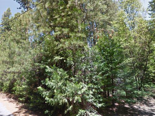 Tuolumne County, Ca $82,000 Wow : Twain Harte : Tuolumne County : California