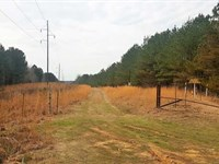 113 Ac Sardis Lake & Mallard Poin : Sardis : Panola County : Mississippi