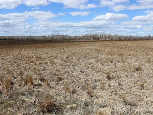 Sw Nebraska Pheasant Haven : Trenton : Hitchcock County : Nebraska
