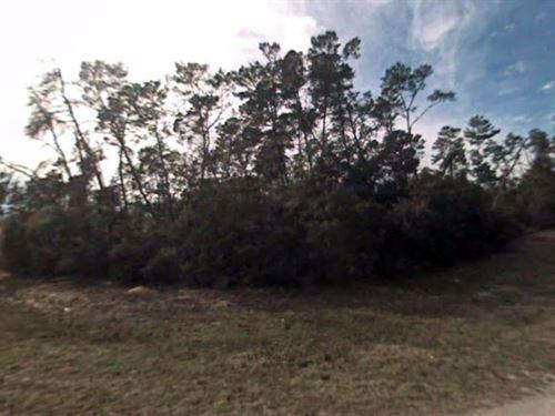 Marion County, Fl $20,000 Neg : Ocala : Marion County : Florida