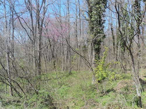 Major Real Estate Auction : Amherst : Virginia
