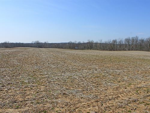 Land With Plenty Of Road Frontage : Mechanicsburg : Clark County : Ohio