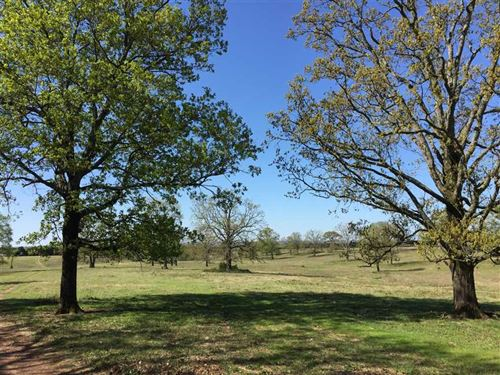 Large Contiguous Cattle Farm With : Mount Vernon : Faulkner County : Arkansas