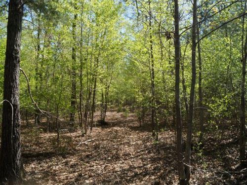 5 Acres - Fairfield County, Sc : Winnsboro : Fairfield County : South Carolina