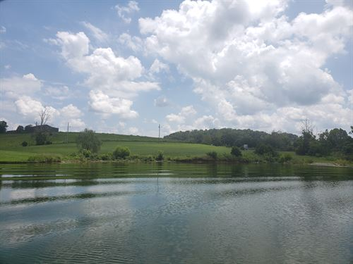 Level Cherokee Lakefront Lot : Rogersville : Hawkins County : Tennessee