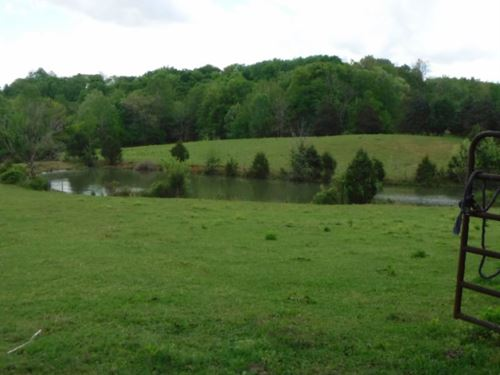 10.44 Ac W/Spring Fed Pond, Creek : Rickman : Cumberland County : Tennessee