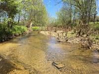 Ferris Creek Rd, 114 Acres : Dubre : Metcalfe County : Kentucky