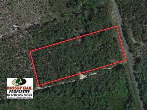 4 Acres of Hunting And Timber Land : Wagram : Scotland County : North Carolina