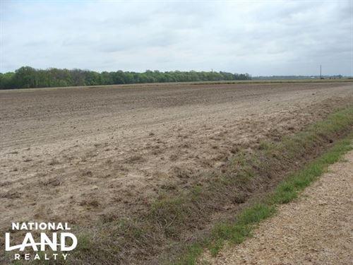 40 Row Crop Farmland : Grady : Lincoln County : Arkansas