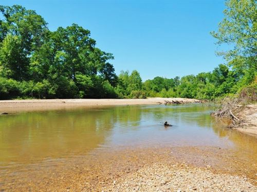 Land For Sale Mature Hardwoods, Riv : Summit : Pike County : Mississippi