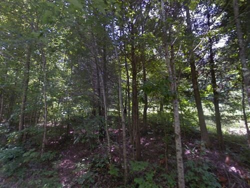 Montgomery County, Tn $25,000 Neg : Clarksville : Montgomery County : Tennessee
