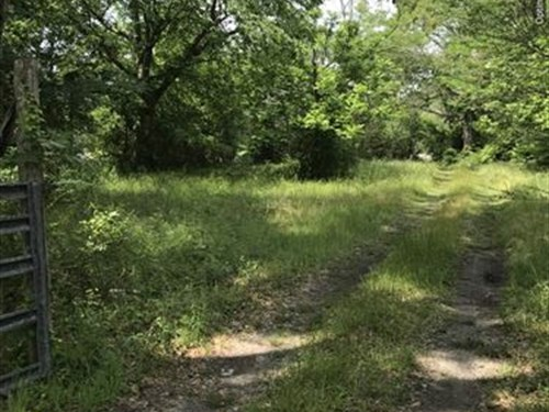 16+/-Ac In Clarke County, Ms : Shubuta : Clarke County : Mississippi