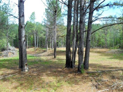70 Acres In Leake County : Walnut Grove : Leake County : Mississippi