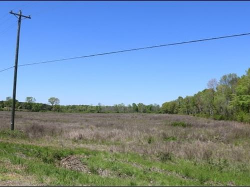 25 Acres In Neshoba County : Philadelphia : Neshoba County : Mississippi