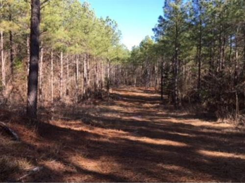 100 Acres In Pontotoc County In Sha : Shannon : Pontotoc County : Mississippi
