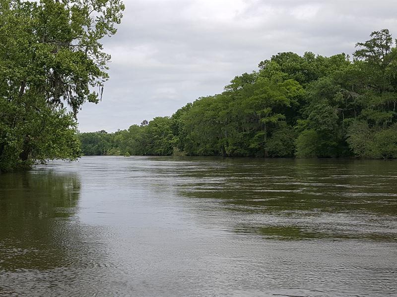 Flint River Cotton Boat Shoals : Albany : Dougherty County : Georgia