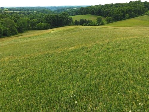 Certified Organic Land 22+/- Acres : Wauzeka : Crawford County : Wisconsin