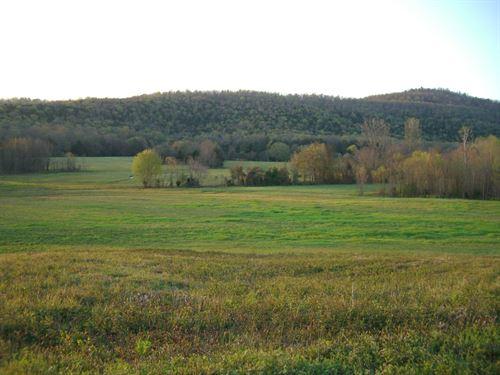 259 Acres, Beautiful Rolling Land : Hollywood : Jackson County : Alabama