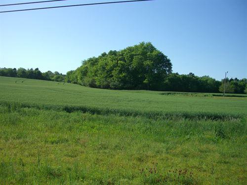 15.46 Ac Rolling Crop Land : Hollywood : Jackson County : Alabama