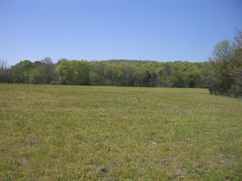 17 Acres Farm Land Great Homesites : Henagar : DeKalb County : Alabama